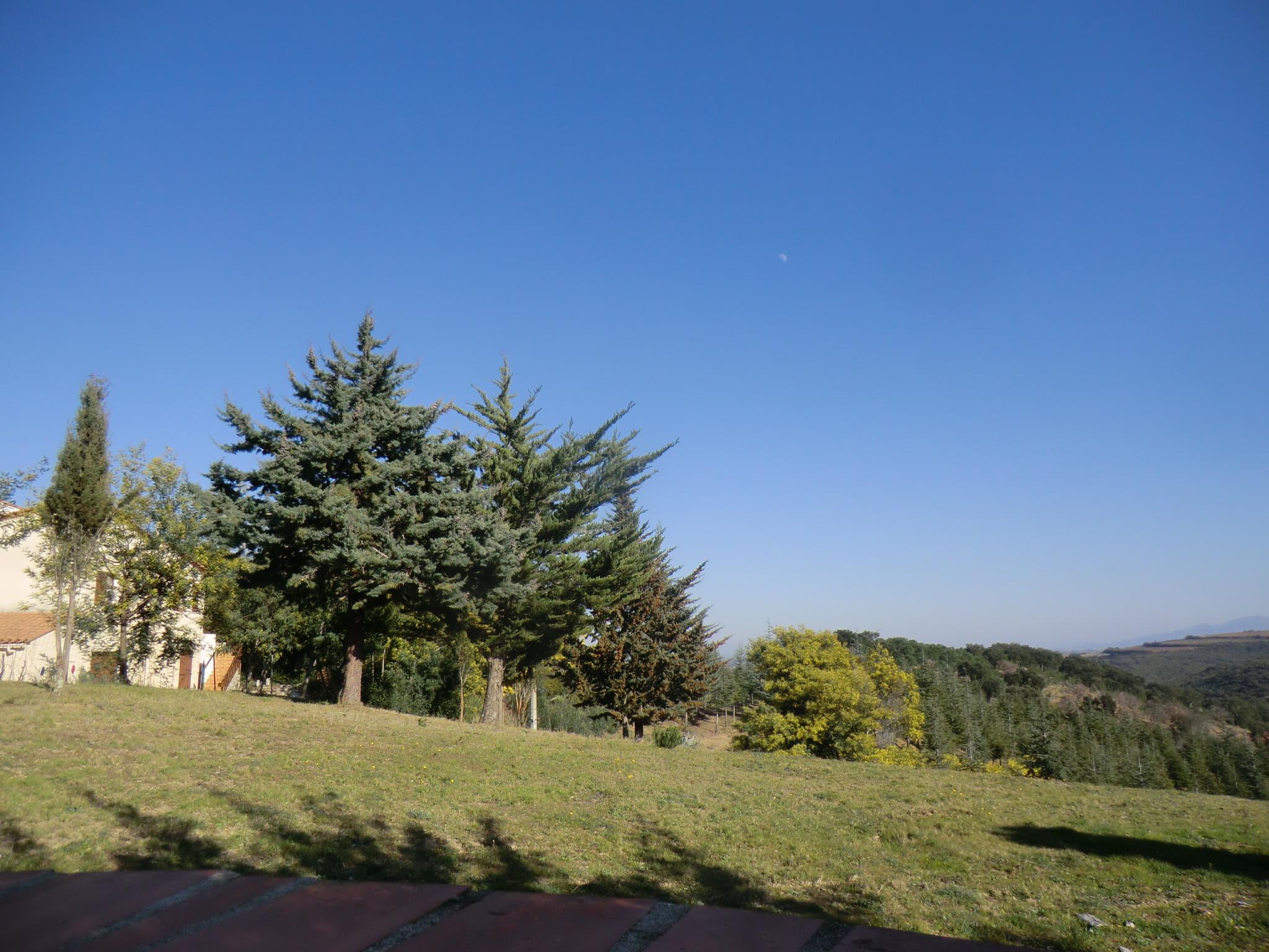 À vendre maison/villa de 165m2 à fourques (66300) - Photo 1'